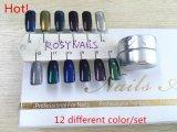 Nail Art Chrome holographique Pigment miroir de la peinture en poudre d'ongles