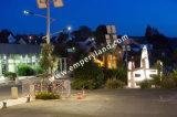 Protección IP68 Ce&RoHS&FCC enumerados 30W-200W LED Solar de la luz de la calle