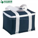 Promotion Portable doublure transparente en PVC 600D polyester Oxford déjeuner sac du refroidisseur