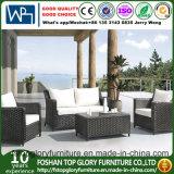 Sofà esterno personalizzato del rattan di disegno più rapido di termine di consegna, sofà poco costoso del giardino del rattan (TG-1393)