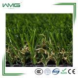 Piccola erba verde fresca per la decorazione