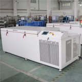 - 120~ Ijskast GY-A250n van de Graad van -20 de Industriële Cryogene