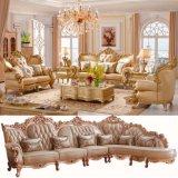 كلاسيكيّة جلد أريكة لأنّ يعيش غرفة أثاث لازم ([511د])