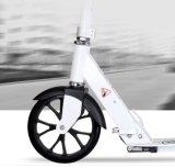 Vespa plegable del retroceso 2-Wheel de la alta calidad para el joven