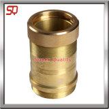 Campione dei pezzi meccanici del metallo di CNC di alta precisione