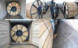 fio 600V elétrico isolado PVC de cobre
