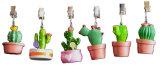Collection décorative de cactus