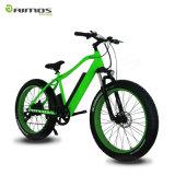 Bici grassa elettrica della gomma di Ebike 500W della montagna