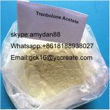 Steroid Puder Finaplix H/Revalor-H Trenbolone Azetat für Muskel-Wachstum 10161-34-9