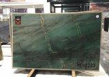 Mattonelle & lastre botaniche della quarzite di verde alta qualità del Brasile/di verde