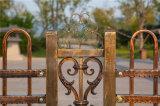 Clôture décorative résidentielle élégante européenne de jardin