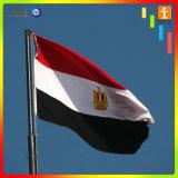 Оптовая продажа поставщика все виды национального флага