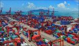 Zuverlässiger Verschiffen-Agens-Service von Guangzhou nach Jakarta