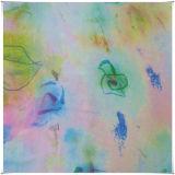 Шифоновые Silk ткани при одобренное Printed/SGS