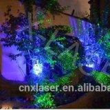 2016 het Nieuwste Innovatieve Openlucht LEIDENE van de Projector van de Laser van de Decoratie van Kerstmis Licht van de Kerstboom Mini