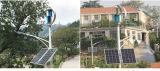 300W 12V 24V se dirigen la turbina de viento vertical del uso, generador de potencia verde