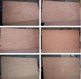 家具および建築材料のポプラの木製の商業合板