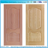 A of degrees of Plywood Door Skin with Moulded panel Deep 12mm