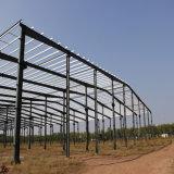 Estructura de acero del fabricante profesional para el almacén