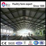 レクリエーションによって自動化される鶏の家禽の家のための軽い鉄骨構造の建物