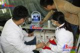 Mindray 초음파 기계 휴대용 수의사 초음파 스캐너, 가축 말, 수의 초음파 탐침 가격 애완 동물, 돼지, 돼지, 양, 산양 초음파 스캐너