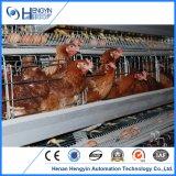 Куриное мясо птицы оборудование для слоев
