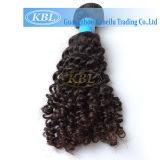 美しいカーリーヘアーのブラジルのバージンの人間の毛髪