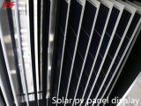 [305و] [بولسليكن] شمسيّة [بف] وحدة نمطيّة, لون شمسيّة فلطيّ ضوئيّ