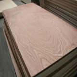 Contre-plaqué commercial d'Okoume de faisceau de bois dur avec la conformité de GV