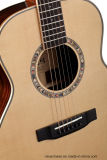 Guitarra popular superior contínua superior Spruce do Rosewood B&S GS de Stika mini