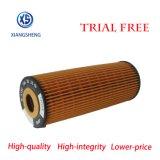 Filtro de petróleo A1621843025 da alta qualidade do fabricante de China para o elemento de filtro A1621843025 do carro do sistema de lubrificação do carro de Ssangyong