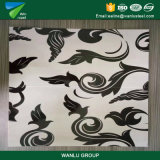 Il colore laminato a freddo ricoperto ha preverniciato la decorazione d'acciaio della bobina materiale