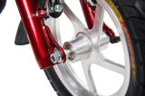 "450W 12 "" Folding Electric Bicycle com Rear Disk Brakes (MES-012)"