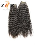 Recta de la India el cabello humano /Pelo virgen de Brasil