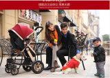 360 Grad-drehender Rad-Baby-Spaziergänger