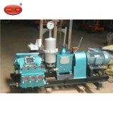 공급 Bw250 250L 드릴링 리그를 위한 유압 모터 피스톤 진흙 펌프
