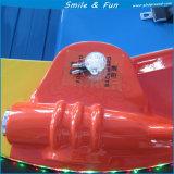 Coche de parachoques de la vuelta para los adultos 1-2 personas en venta