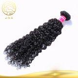 中国の安い卸し売り女性の未加工Remyのバージンのインドの人間の海外毛のよこ糸