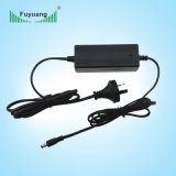 Fuyang Level VI AC DC 12V 5A Power Adapter