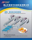 Bolo de camada de Alimentação Automática e máquina de embalagem