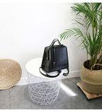 Manier de Handtas van de Vrouwen van de Zak van de Handtassen Pu van het Leer van de Zakken van de Manier van Dame Handbag Designer Bag Promotional Zak (WDL0361)