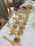 Hoher Grad-Goldfarben-Spiegel-Effekt oder aufgetragene Stahlmetallfertigkeit-Schuh-Zahnstange