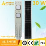 세륨 Certificate IP65를 가진 One Solar Street LED Lighting에서 모두