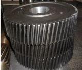 Zylinderförmiger schraubenartiger Gang, hohe Präzisions-schraubenartiger Übertragungs-Gang