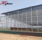 Tipo serra intelligente di Venlo della serra di vetro