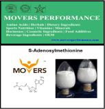 Qualität S-Adenosylmethionine mit CAS-Nr.: 29908-03-0