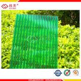Bladen van Policarbonato van het Blad van het Polycarbonaat van de tweeling-muur de Holle (PCYM031)