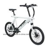 """Legierung holländisches Oma Holand 20 """" elektrisches Fahrrad-Batterie-Fahrrad"""