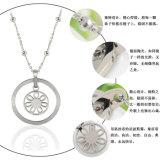 De Halsband van de Tegenhanger van de Juwelen van het Roestvrij staal van de Juwelen van de manier (hdx1061)