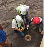 ASTM D5882 더미 보전성 검사자